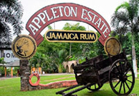 Appleton Rum Tour